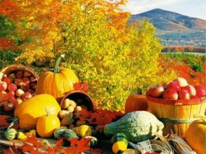 Осенний урожай плодовых культур