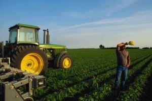 Финансовые проблемы начинающих фермеров