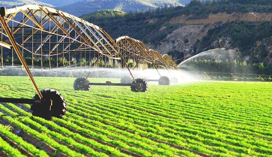 Растениеводство в России