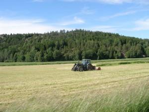 Трактор обрабатывает землю на селе