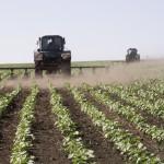 Оптимизация затрат на производство продукции растениеводства