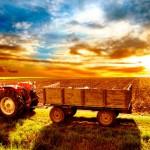 Основы растениеводства