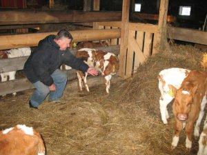 Поддержка фермеров мясного скотоводства