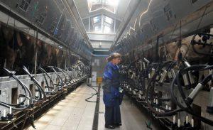 Современная молочная фабрика