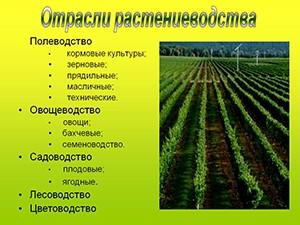 Российское растениеводство