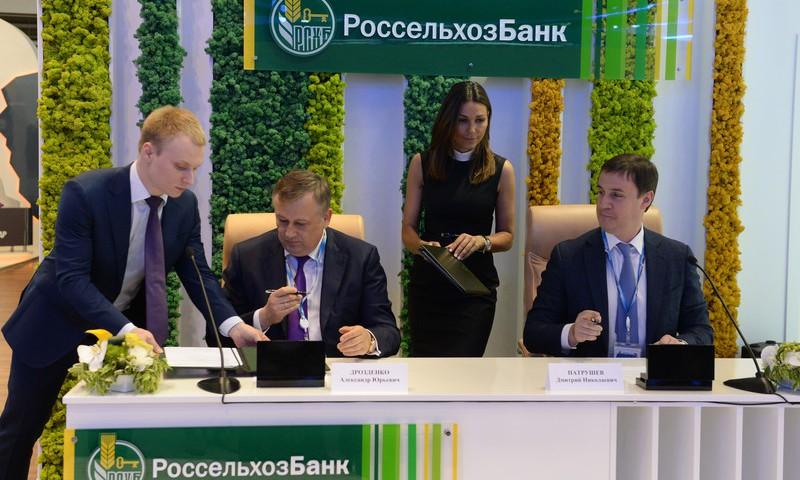 Налажено сотрудничество Россельхозбанка и сельхозпроизводителей