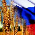 Россия и в этом году остается главным экспортером пшеницы на мировом рынке