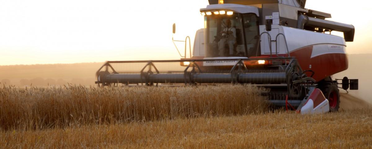 Агропромышленный комплекс в Приморском крае за прошедшую пятилетку увеличил производство на 14%