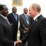 Зимбабве и Россия будут сотрудничать в сфере  животноводства