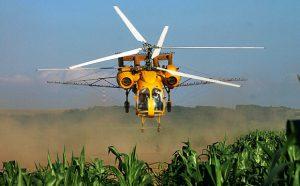 Обработка кукурузы инсектицидом