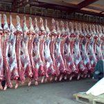 Говядина из Дагестана самая недорогая и качественная