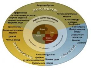 Эффективность применения минеральных удобрений