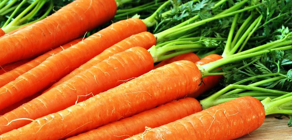 carrot_0-1000x480.jpg