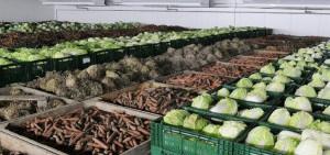 Технология хранения и переработки продукции растениеводства