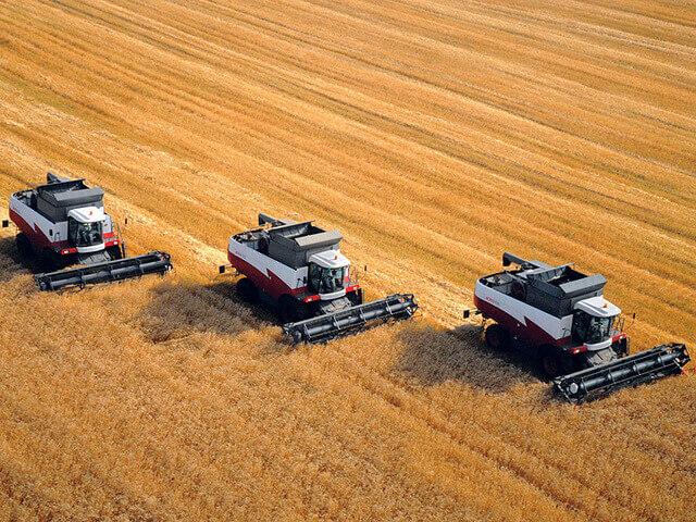 Комбайны в поле молотят пшеницу
