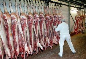Производство свиного мяса