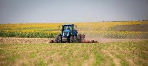 Отрасли растениеводства: эффективность и состояние в России