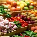 Виды растениеводства, основные отрасли