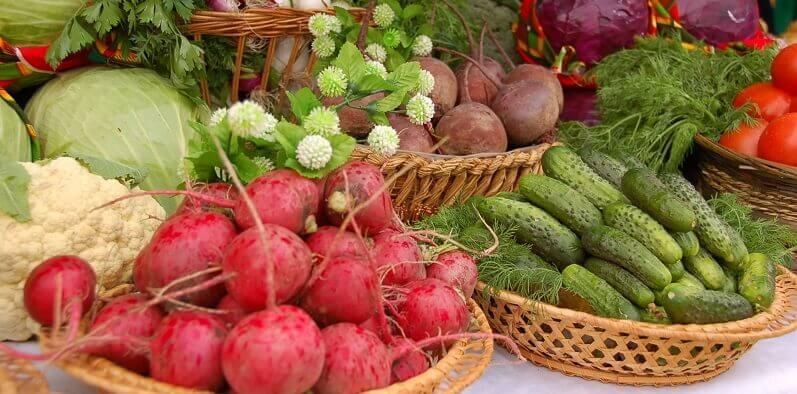 Себестоимость продукции растениеводства