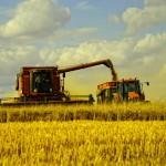 Какие потребности удовлетворяет растениеводство