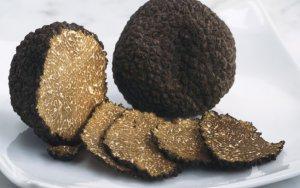 Выращивание трюфелей: особенности и главные правила