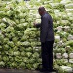 Губернатор Амурской области предлагает тщательно проверять овощи поступающие из Китая