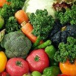 Вредители и болезни овощных культур