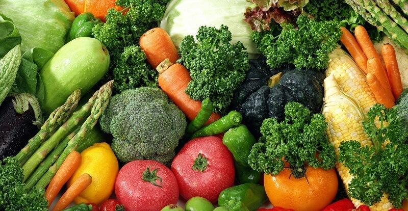Вредители и болезни овощных культур. Многоядные вредители