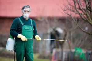 Борьба с вредителями химическим способом