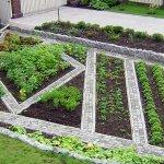Грядки в огороде: виды и выбор места