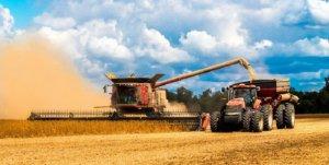 Валовой сбор зерна
