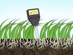 Контроль средств защиты растений