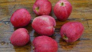 Яблоки сорта Летнее полосатое