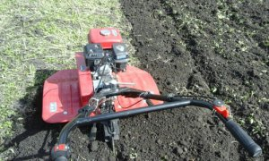 Обработка почвы мотокультиватором