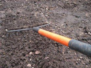 Подготовка почвы для сирени