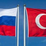 Снятие турецкого эмбарго ударит по российскому тепличному хозяйству