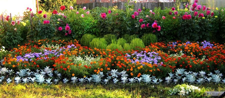 Создание цветников и уход за ними