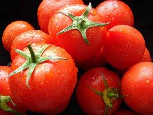 Выращивание томатов собственноручно