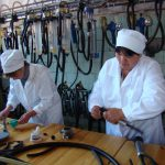 В Кемеровской области прошло совещание по проблемам искусственного осеменения КРС