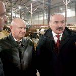 Животноводству Омской области будет оказана поддержка федерального центра