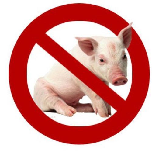 pig_prohibit