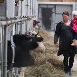 В Приморском крае создаются новые семейные фермы
