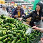 Турция не предоставляет  программу фитосанитарной безопасности своей продукции