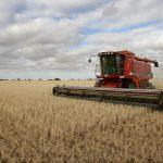 Аграриям рассказали, как взять кредит с маленькой процентной ставкой