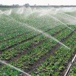 Мелиоративная отрасль АПК Ставропольского края в будущем году получит господдержку