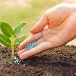Спрос на минеральные удобрения снизился, как и цены на них