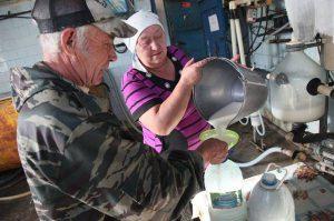В Омской области поддержат семейные фермы