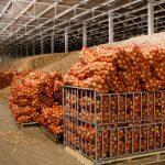 В Макаровском районе Сахалинской области построено современное овощехранилище