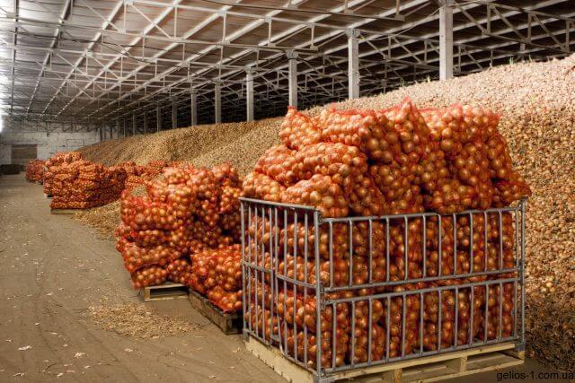 На САхалине построено новое овощехранилище