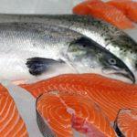 В Магаданской области цены на рыбную продукцию не растут
